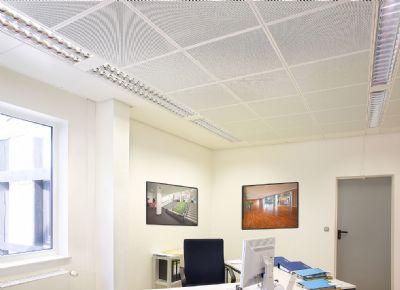 Ceiling Art Ceiling Light Diffuser And Ceiling Light Lens Designs